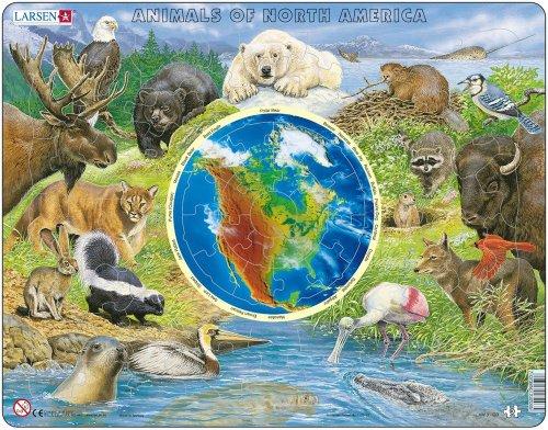 Tiere in Nordamerika