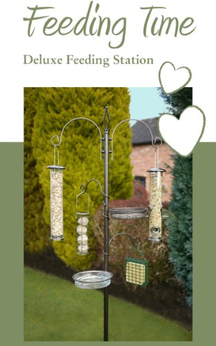 Feeding Time Deluxe Wild Bird Feeding Station